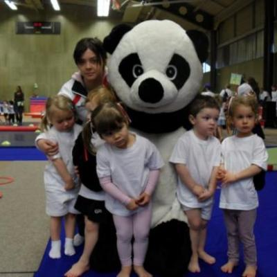 COUPE PANDA
